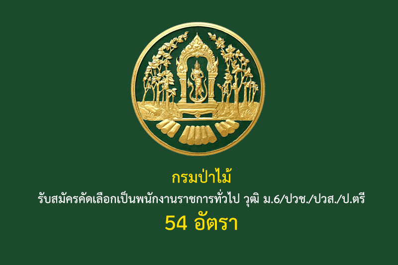 กรมป่าไม้ รับสมัครคัดเลือกเป็นพนักงานราชการทั่วไป วุฒิ ม.6/ปวช./ปวส./ป.ตรี 54 อัตรา